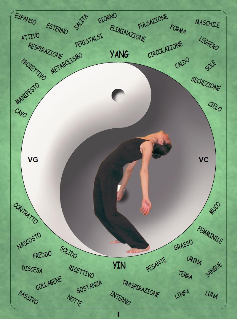 Despensa de estiramiento zen